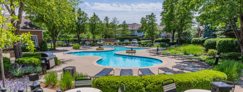 Best Times to Water Trees Overland Park